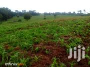 3 1/2 Acres Shamba for Sale | Land & Plots For Sale for sale in Nyandarua, Charagita
