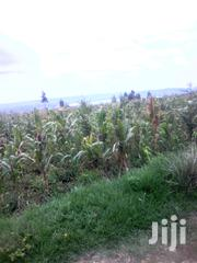 5 Acres Naivasha, Mwiciringiri Primary Area | Land & Plots For Sale for sale in Nakuru, Naivasha East