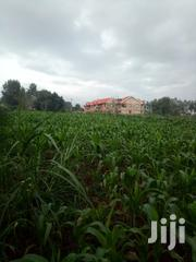 1 Acre Prime Land For Sale | Land & Plots For Sale for sale in Kiambu, Ngecha Tigoni