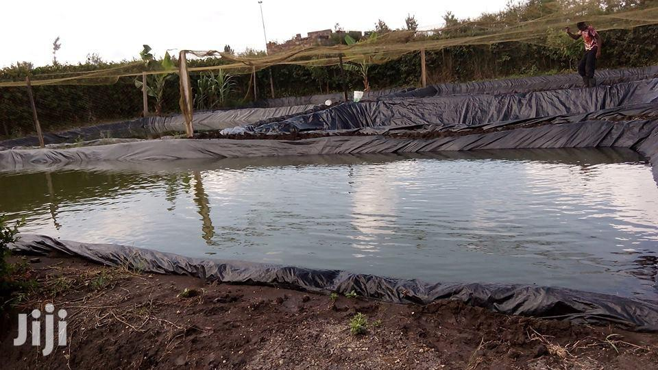 Archive: Dam And Fish Pond Liner For Sale