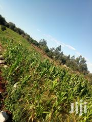 1 Acre for Sale in Tigoni Kentmere Area 200 Meters From Tarmac Road | Land & Plots For Sale for sale in Kiambu, Limuru East