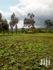 ½ Acre Kinungi | Land & Plots For Sale for sale in Nakuru, Naivasha East