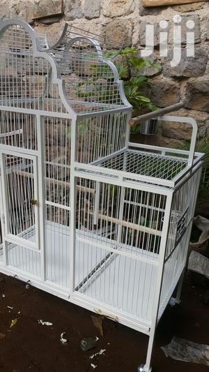 Parrot,Pegion Cages