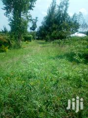 2 Acres Land in Bondo Town | Land & Plots For Sale for sale in Siaya, West Sakwa (Bondo)