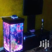 Mini- Tower Aquarium | Fish for sale in Nairobi, Kahawa