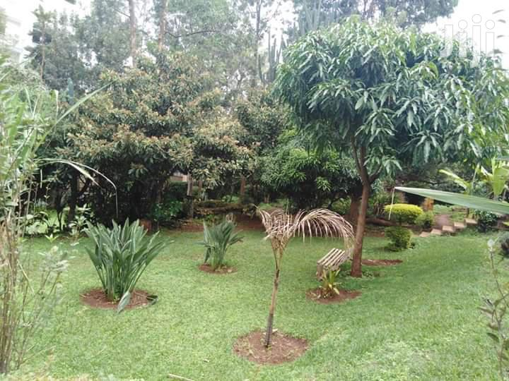 Spacious 1br Apartment to Let in Lavington | Houses & Apartments For Rent for sale in Lavington, Nairobi, Kenya