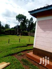 House and 1.3 Acre of Land at Chemnoet /Chepkogony | Land & Plots For Sale for sale in Nandi, Ndalat
