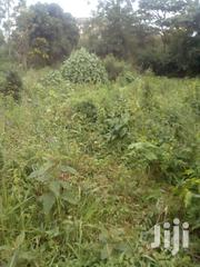 Land For Sale | Land & Plots For Sale for sale in Kirinyaga, Baragwi