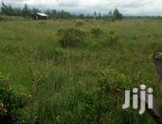 4.5 Acres In Daiga Nanyuki Near Town At An Affordable | Land & Plots For Sale for sale in Laikipia, Thingithu