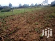 Shambas To Lease | Land & Plots for Rent for sale in Nyandarua, Mirangine