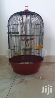 Quality Bird Cage | Pet's Accessories for sale in Mombasa, Mji Wa Kale/Makadara