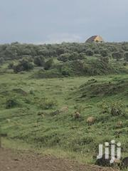 Plot for Sale at Longonot Gate Development | Land & Plots For Sale for sale in Nakuru, Hells Gate