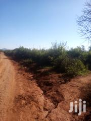 43acres In Muraru Area | Land & Plots For Sale for sale in Embu, Mbeti North