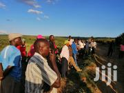50 by 100 (Eighth) Acre Plots for Sale in Kinungi Naivasha | Land & Plots For Sale for sale in Nairobi, Nairobi Central