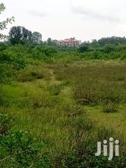 Quater Plot Between Bondo Town and Jaramogi University | Land & Plots For Sale for sale in Siaya, West Sakwa (Bondo)