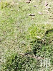 12acres On Tarmac | Land & Plots For Sale for sale in Nyandarua, Kaimbaga