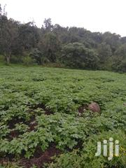 Agricultural Land With Tourist Scenery | Land & Plots For Sale for sale in Nakuru, Mbaruk/Eburu