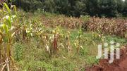 1/8 Plot For Sale In Wangige,Nyathuna. | Land & Plots For Sale for sale in Kiambu, Kabete