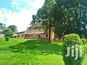 To Let 6bdrm With Dsq Standalone At Riverside Drive Nairobi Kenya | Commercial Property For Rent for sale in Nairobi, Lavington
