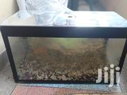 Aquarium Tank For Sale Without Fish.Only Tank With Accessories | Fish for sale in Nairobi, Roysambu