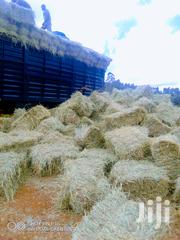 Boma Rhode Hay | Feeds, Supplements & Seeds for sale in Nairobi, Nairobi South
