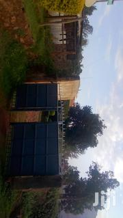 100 By 100 With A 3 Houses In Bluevalley | Land & Plots For Sale for sale in Embu, Mbeti North