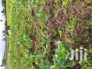 Land for Sale | Land & Plots For Sale for sale in Nakuru, Naivasha East