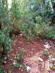 1/8 Acre On Sale At Gatitu | Land & Plots For Sale for sale in Nyeri, Gatitu/Muruguru