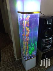 Modern Aquarium | Fish for sale in Nairobi, Kahawa West