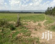 33 Acres 4 SALE in Nyandarua. | Land & Plots For Sale for sale in Nyandarua, Kaimbaga