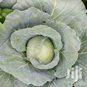 Cabbages For Sale | Feeds, Supplements & Seeds for sale in Kiambu, Ndenderu