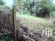 Bondeni 1/8 Acre on Sale | Land & Plots For Sale for sale in Kajiado, Ngong