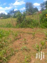 1/4 Piece Of Land On Sale | Land & Plots For Sale for sale in Bungoma, Bwake/Luuya