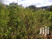 50 By 100 On Tamarc In Gachoka | Land & Plots For Sale for sale in Embu, Mbeti North