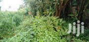 50x100 Plot for Sale in Ngecha/Limuru | Land & Plots For Sale for sale in Kiambu, Ngecha Tigoni