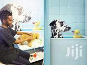 Dog Grooming & Cleaning Services.Quality & Guaranteed Service.Call Now | Pet Services for sale in Nairobi, Westlands