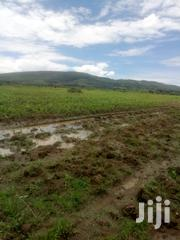 15 Acres for Sale in Rongai Nakuru   Land & Plots For Sale for sale in Nakuru, Soin (Rongai)