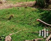 Prime Land For Sale One Acre | Land & Plots For Sale for sale in Nyeri, Mweiga