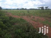20 Acres for Sale in Mogotio   Land & Plots For Sale for sale in Nakuru, Soin (Rongai)