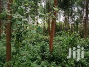 2.5 Acres for Sale in KARATINA | Land & Plots For Sale for sale in Nyeri, Karatina Town