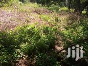 1/2 Acre on Sale at Giakanja | Land & Plots For Sale for sale in Nyeri, Kamakwa/Mukaro