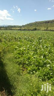 2 Acres Land for Sale in Kikopey Gilgil | Land & Plots For Sale for sale in Nakuru, Gilgil