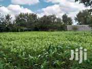 1 Acre For Lease | Land & Plots for Rent for sale in Kajiado, Ongata Rongai