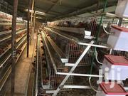 Battery Cage System   Farm Machinery & Equipment for sale in Nairobi, Utalii
