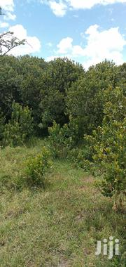 2 Acres Lamuria | Land & Plots For Sale for sale in Nyeri, Gatarakwa