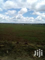 2 Acres of Land at Njoro for Sale | Land & Plots For Sale for sale in Nakuru, Njoro
