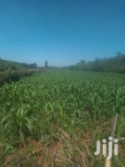 Agricultural/Fertile Land For Sale | Land & Plots For Sale for sale in Nakuru, Lare