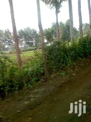 1⁄2 Acre Plot Naivasha | Land & Plots For Sale for sale in Nakuru, Naivasha East