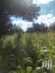 1acre in Muraru | Land & Plots For Sale for sale in Embu, Mbeti North