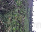 Land for Sale 50 by 100 | Land & Plots For Sale for sale in Kiambu, Ndeiya